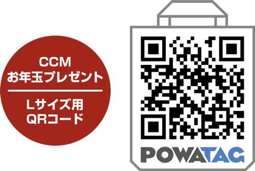 ccm_l_size_qr